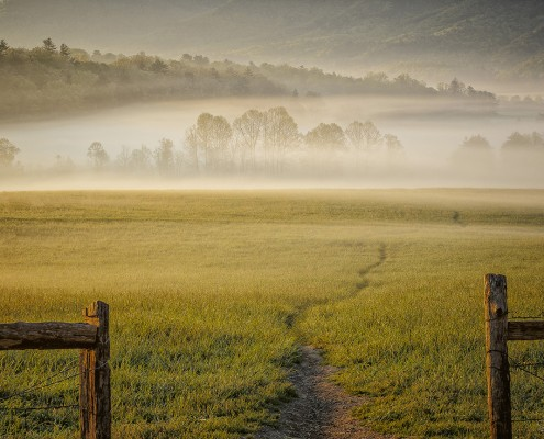Cades Cove at dawn by Susan Hay.