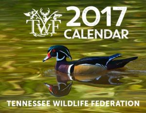calendar_2017_front-cover