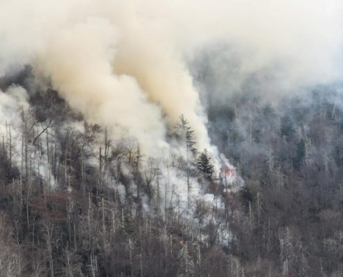 wildfire Tennessee