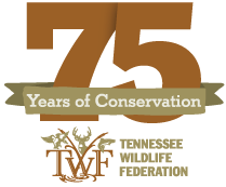 75 years of conservation-Tennessee Wildlife Federation